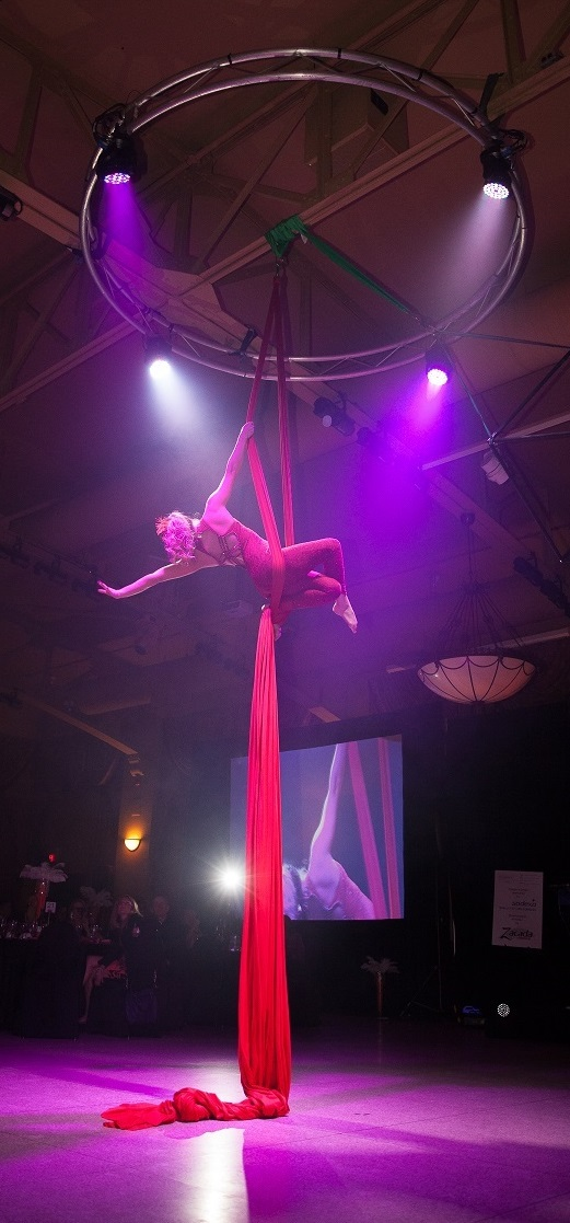 Corporate Functions Circus Style